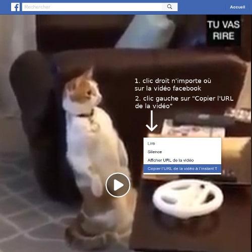 Copie du lien de la vidéo facebook